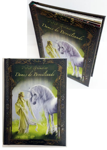 Grimoire Dames de Brocélliandes