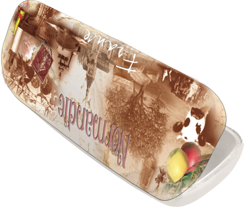 Normandy vintage glasses case